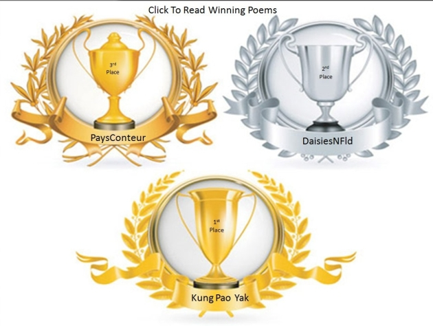 Contest Winners Trophies