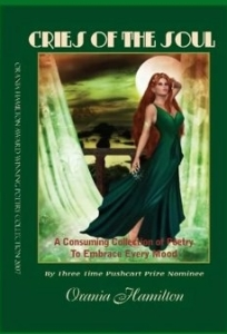 Callys book cover
